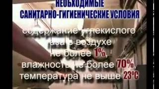 видео СРЕДСТВА ИНДИВИДУАЛЬНОЙ ЗАЩИТЫ НАСЕЛЕНИЯ,  ИХ ПРЕДНАЗНАЧЕНИЕ