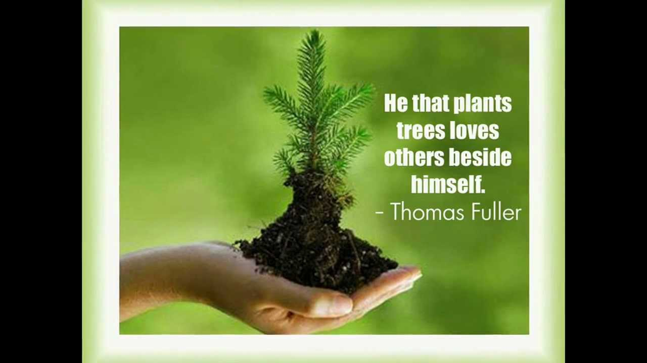 Quotation Of The Day Earth Day Quotes  Youtube