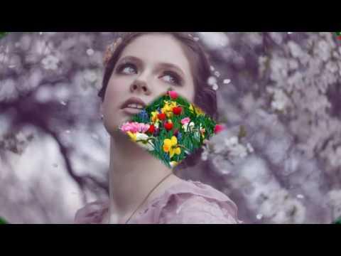 Весеннее настроение....стихи: Галина-Фея Хрунич,муз.Martin Todsharow