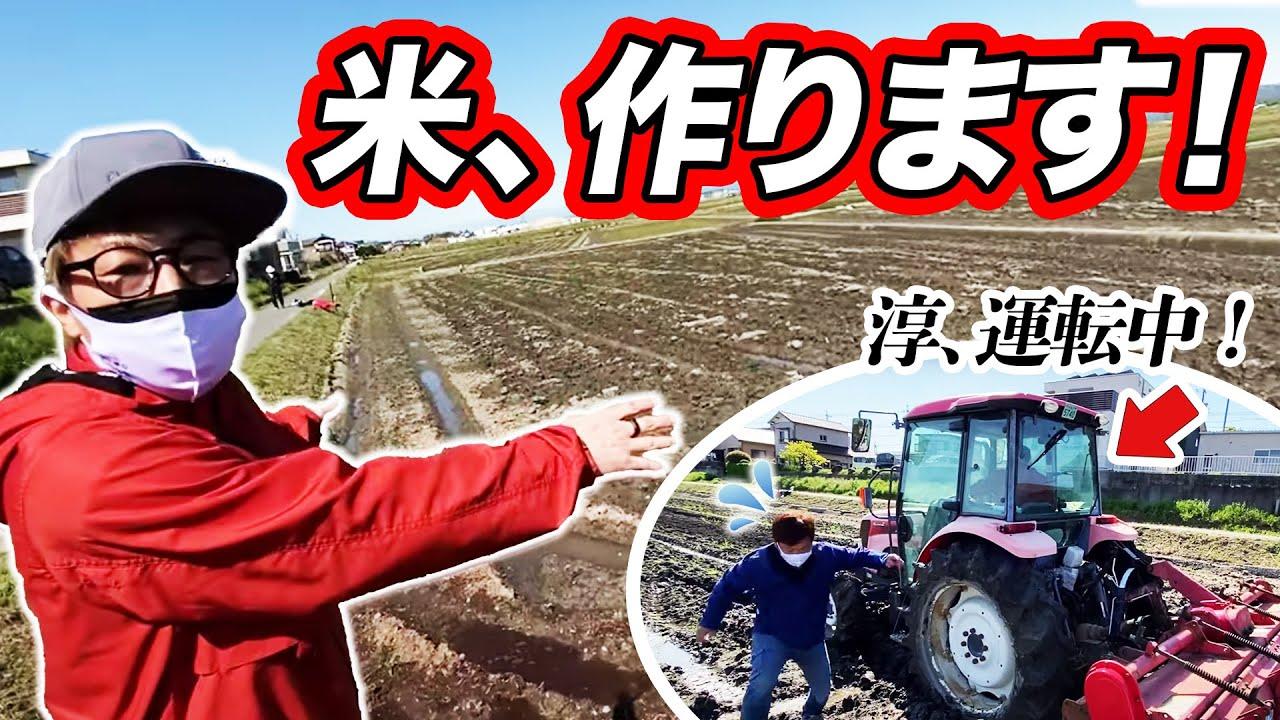 【プロジェクト始動】田村淳、田んぼでお米作り始めました。