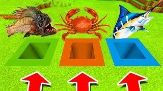 Minecraft PE : DO NOT CHOOSE THE WRONG HOLE! (SwordFish, Piranha & Crab)