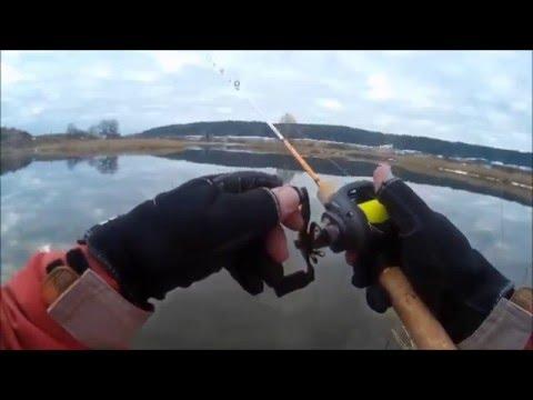 окунёвый мульт. Первая рыбалка с мультипликаторной катушкой.