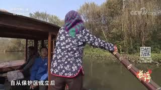 《远方的家》 20191205 长江行(85)泰州:溱湖两岸是家乡| CCTV中文国际