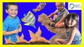 KIDS FUN trip to the Aquarium! With Fish, SHARKS, Sting-Rays, Turtles, Finding NEMO, DORY and More!