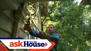 How to Temporarily Transplant a Rose   Ask This Old House
