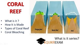 What is coral reef and coral bleaching || Quikr Exam
