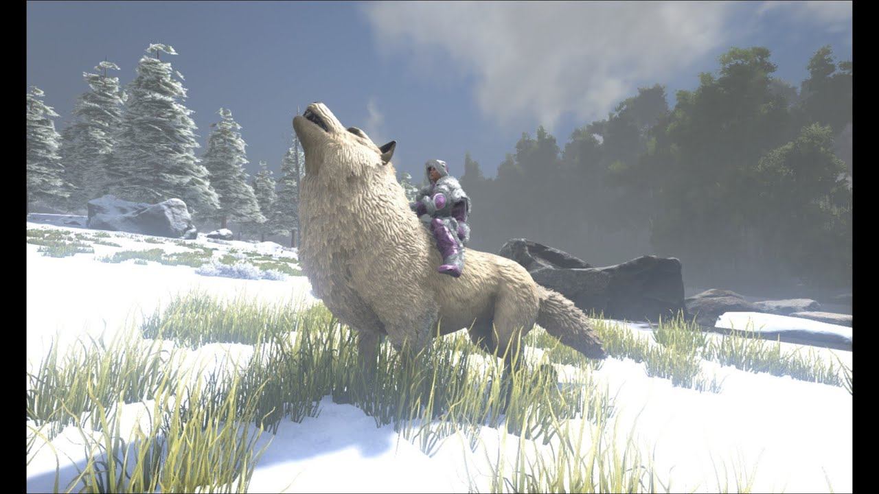 ark survival evolved dire wolf taming youtube