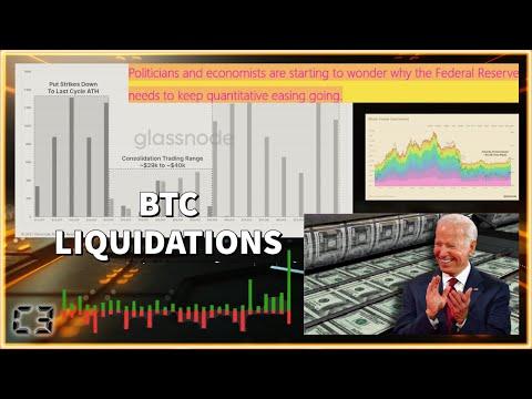 Bitcoin On-Chain GLASSNODE Data Analysis | US Politicians & Economist FEARFUL of Quantitative Easing