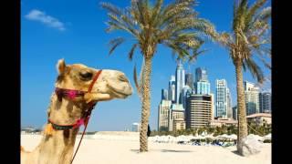 Vida Hotel Downtown Dubai ex Qamardeen Hotel in Dubai (Dubai - Vereinigte Arabische Emirate)