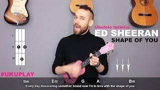 Скачать Shape Of You Ed Sheeran Ukulele Tutorial MusicSheet Link