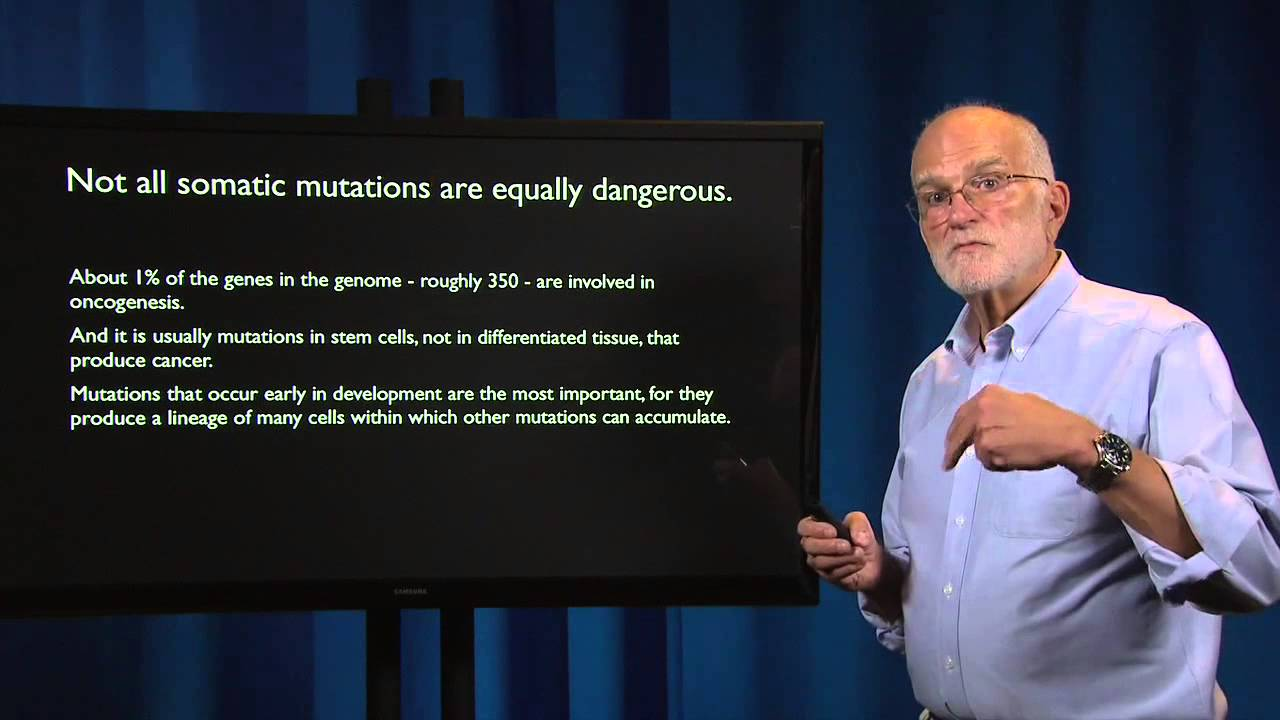 6.2 - Cancer: Why we are susceptible