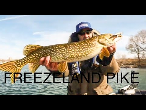 Cold Water Toronto Pike Fishing ( Tricks And Tips )