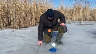 Рыбалка на жерлицы весна 06 03 2021 щуки не дают скучать