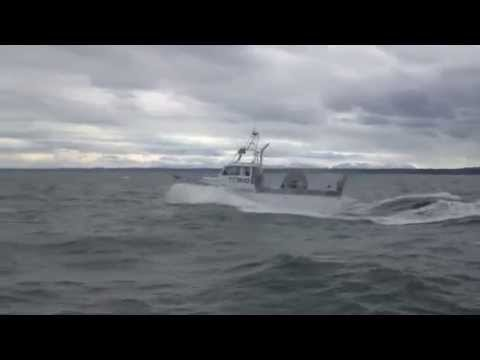 F/V Liberty--Cook Inlet 2013