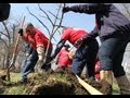 Volunteers plant trees in honor of Earth Day on Chicago's south side