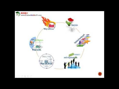 David Chen老师 -- Introduction of Data Analyst/BI Developer Career(数据分析师职业之路)