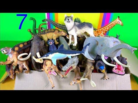 Learn about Wild animals | Dinosaurs | Zoo animals | Mammoths | Prehistoric mammals | Marine Animals