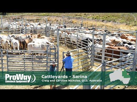 ProWay Cattleyards Sarina QLD Australia