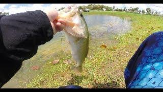 Miami bass fishing tournament
