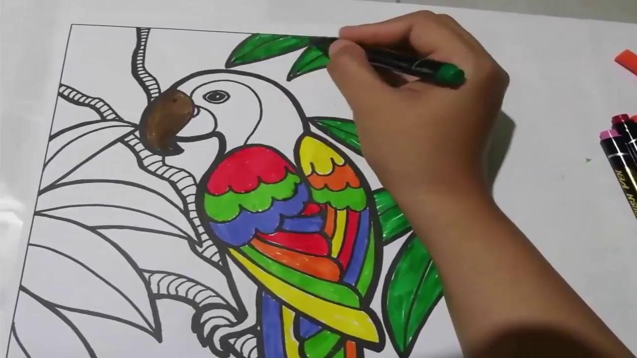 Belajar Mewarnai Gambar Burung