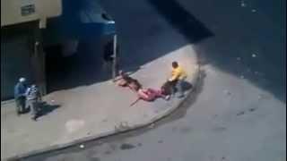 2 Dogs attack Man in Casablanca Morocco 22-04-2013