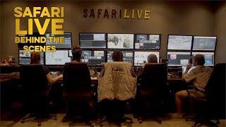 Behind safariLIVE\'s 2018 \