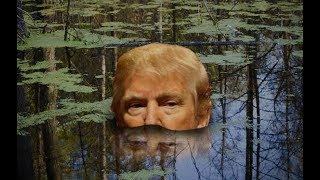 2017-10-17-21-21.Trump-I-Made-Friends-With-The-Swamp-