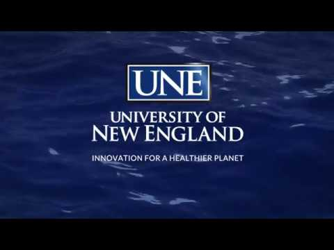 UNE Westbrook College Of Health Professions Graduate Commencement Ceremony 2018