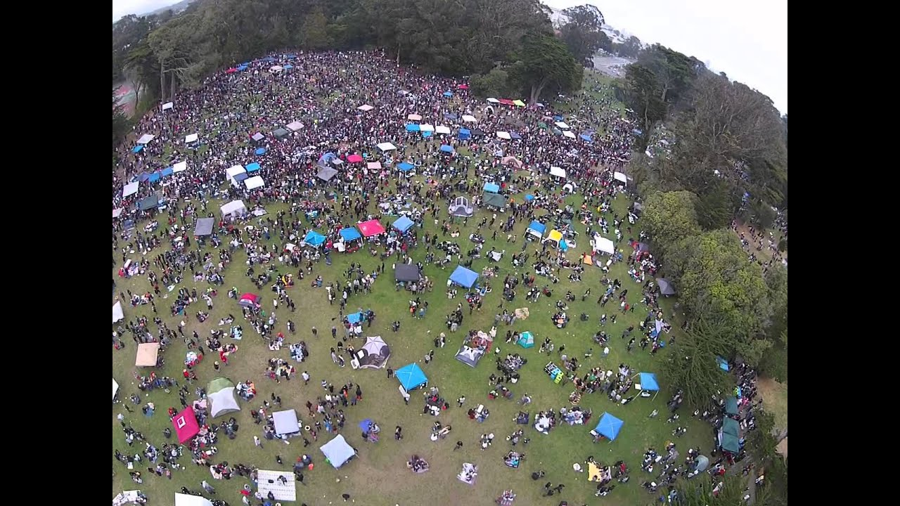 Image result for hippie hill