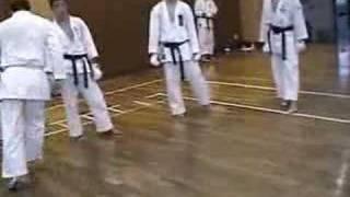 Real karate kick!