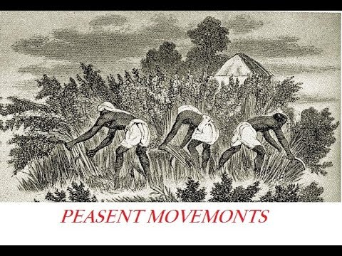 Category:Peasant Movement Institute Station