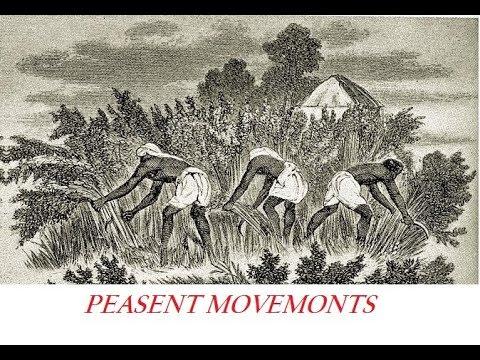 Peasant movement