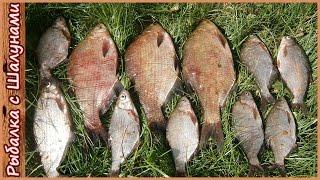 Ловля леща на фидер. Рыбалка на Днепре в Беларуси