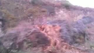 GOA Kucing (Perjalanan Da
