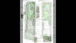 Landscape Design Nz. Concept / Planting Plans New Zealand.