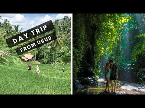 WHAT TO DO IN BALI | Grab Day Out at Tegalalang