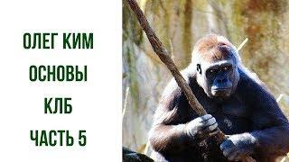 Олег Ким основы личной безопасности часть 5