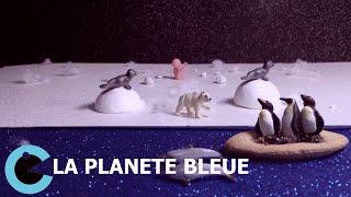 La Planète Bleue - Court Métrage - Agir contre le changement climatique