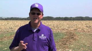 Stacy Campbell - Locust Tree Control Field Day