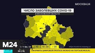 Количество заболевших коронавирусом в Подмосковье превысило 2 тысячи человек - Москва 24