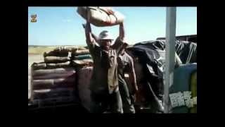 СлабО поднять мешок с цементом? - Weak to lift a bag of cement?(СлабО поднять мешок с цементом? Приколисты друзья развлекаются., 2012-09-24T19:19:29.000Z)