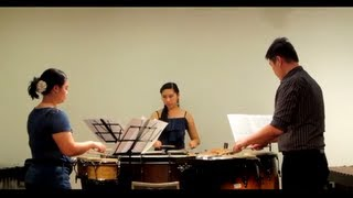 Trio per Uno, first movement by Zickovic - played by PENSO