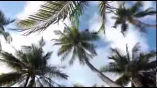 Kate & Igor's dream honeymoon video