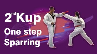 2nd Kup Red Belt One Step Sparring