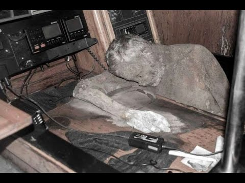 Mummified body of Manfred Fritz Bajorat Found in ...