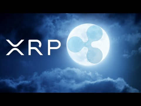 #xrp-ripple-hires-top-amazon-executive.-so-it-begins-the-bis-teamed-with-newyorkfed