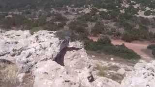 Полуостров Акамас,Пафос,Кипър с Даниел Димитров