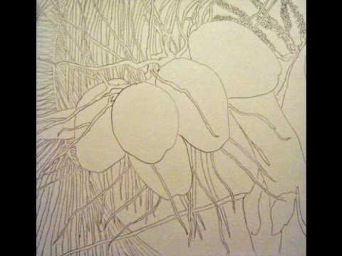 coconut drawing progression.wmv