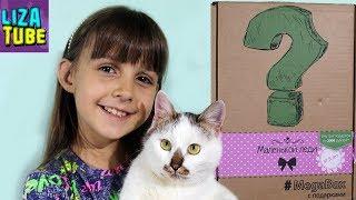 Подарки и Сюрпризы для Девочек Милые вещички Мегабокс Маленькой леди Распаковка с питомцем