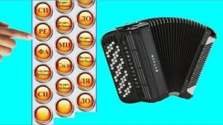 Расположение нот на правой клавиатуре баяна.